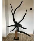 Wooden sculpture - ROOT