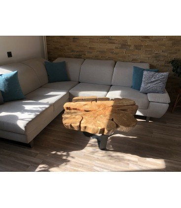 Coffee table - ROOT