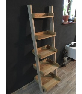 Shelf- LADDER